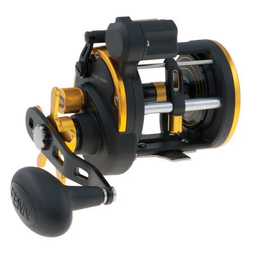 Top 10 Best Counter Fishing Reels and Rod Comparison