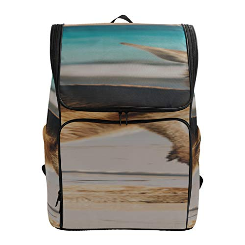 A Kangaroo Stand Up In Grasslands Sports Travel Bag Travel Cooler Bag Backpack For Men Baby Daypackfits 15.6 Inch Laptop And Notebook Best Packable Daypack