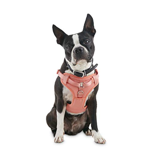 Good2Go Pink Padded Step-in Dog Harness, X-Small