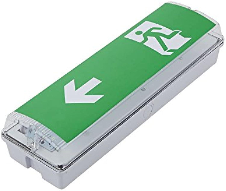 Biard 18W LED rundes IP65-Notschott-Licht, wasserdichte Beleuchtung für Lagerhuser im Innen- oder Auenbereich mit 3-Stunden-Notstromversorgung, Bulkhead 7.5W Ausgang  Links