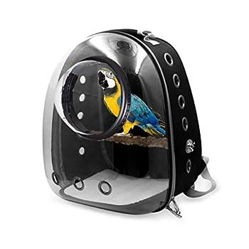 Xzbnwuviei Cage de transport légère pour animal domestique - Sac de voyage pour perroquet - Respirante - Transparente - Capsule spatiale