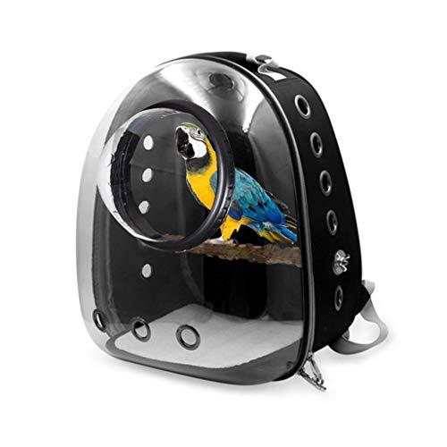 Vogeldrager, Papegaai drager rugzak reizen kooi vogels ademende transparante ruimte capsule, Zwart