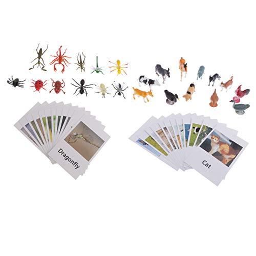 perfeclan Tarjetas Montessori Animal Match - Ayuda A Los Bebés Bebés A Conocer Animales Y Reconocer Palabras - Modelo De 12 Piezas De Animales E Insectos Avícol