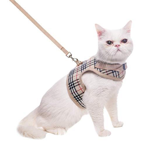 BINGPET Escape Proof Katzengeschirr mit Leine - verstellbare Soft Mesh Weste zum Gehen