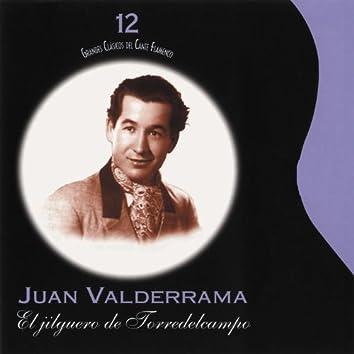 Grandes Clásicos del Cante Flamenco, Vol. 12: El Jilguero de Torredelcampo