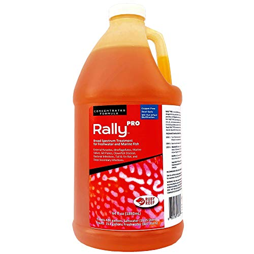 Ruby Reef Rally Pro (64 oz)