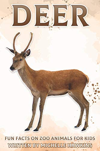 Deer: Fun Facts on Zoo Animals for Kids #26