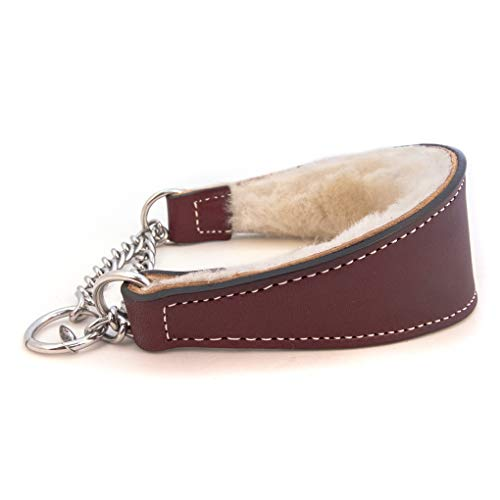 Sheepskin Lined Leather Martingale Dog Collar 1in wide by 12in - Burgundy