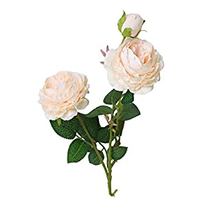 Wakeu Artificial Western Rose Fake Silk Flower Peony Single Floral Home Decor Living Room Bedroom Garden Party Wedding Decoration in Pots Vase for Desk Table (Orange)