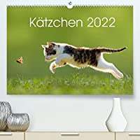 Kaetzchen 2022 (Premium, hochwertiger DIN A2 Wandkalender 2022, Kunstdruck in Hochglanz): Katzenkalender mit abwechslungsreichen und stimmungsvoll gestalteten Bildern passend zur Jahreszeit. (Monatskalender, 14 Seiten )
