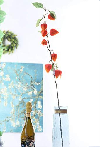 ZhenHe Künstliche Blumen Home Decor Künstliche Blumen Laterne Blume Gefälschte Blume Laterne Frucht Hauptdekoration Hochzeitsarrangement Simulation Pflanze Rot Obst (10 Stück) Dekorationen