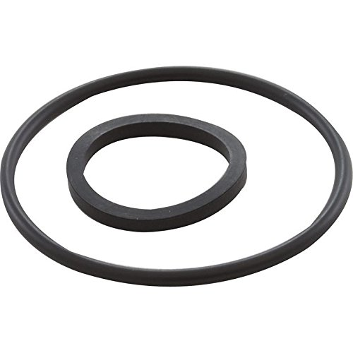 Hayward CCX1000Z5 O-Ring Replacement for X stream Filtration Series