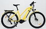 Cycle Denis Rider - Bicicleta eléctrica de montaña eléctrica (27,5 pulgadas)