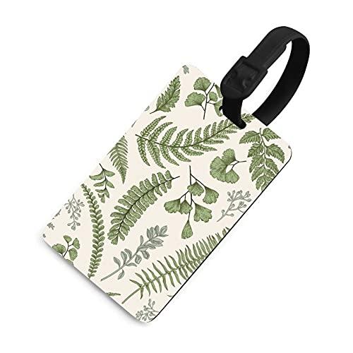 Etiqueta de equipaje duradera para hombre, etiquetas identificadoras de bolsa con cubierta de privacidad, accesorios de etiqueta de viaje para maleta, avión, mochilas, hojas y hierbas boj botá