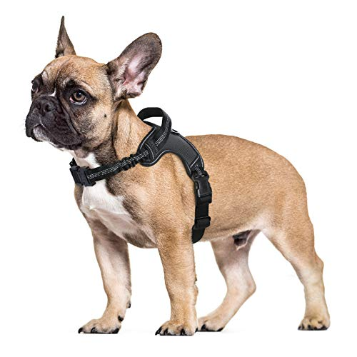 rabbitgoo Dog Harness, Adjustable Dog Walking Harness with Handle and Shock-Absorbing Bungee Straps, Reflective Dog Vest Harness No Choke, Halter Harness with Padded Strap for Large Dogs (Black,L)