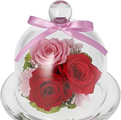 プリザーブドフラワーギフト 誕生日 お祝い セシル (ピンクレッド)