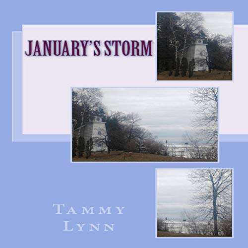 January's Storm Audiobook By Tammy Lynn cover art