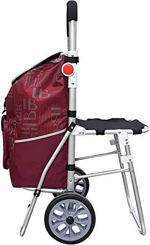 FDSAD Trolley Dolly mit Sitz, Treppensteigen Mehrzweck-Klappwagen für Wäsche, Lebensmittel, Einkaufen und mehr