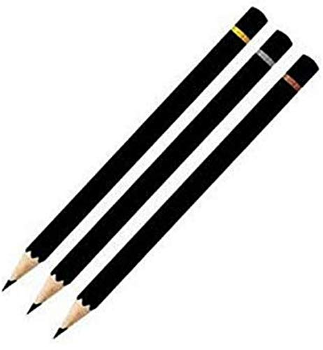 Camlin Charcoal Pencils - Soft (Pack Of 10)