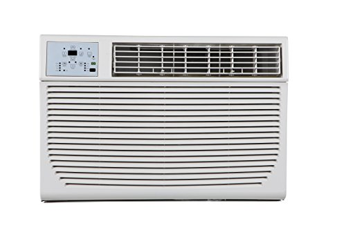 Impecca 10,000 BTU/h Electronic Through The Wall Air Conditioner, 5-15P/110