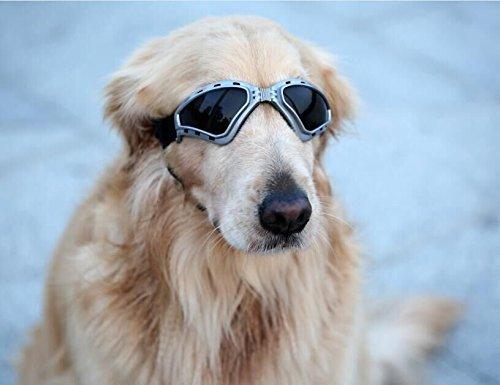 Namsan Hunde Sonnenbrille V-förmiger Hundebrille Wasserdicht Winddicht Schutzbrille für Mittlere/Groß Hunde -Grau