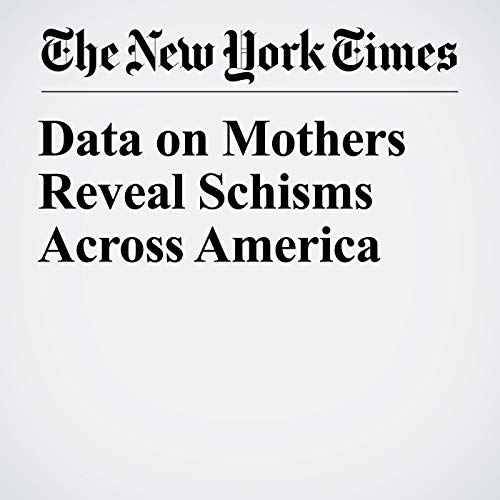 Data on Mothers Reveal Schisms Across America audiobook cover art