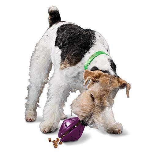 PetSafe Busy Buddy Twist 'n Treat Dispensing Dog Toy Now $6.95 (Was $11.99)