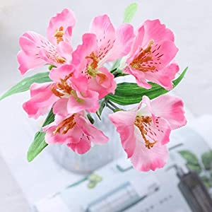 Artificial and Dried Flower Daffodils Lily Artificial Flowers for Wedding Home Garden Decoration Silk Narcissus Flowers Christmas Fake Flower – ( Color: Deep Pink )