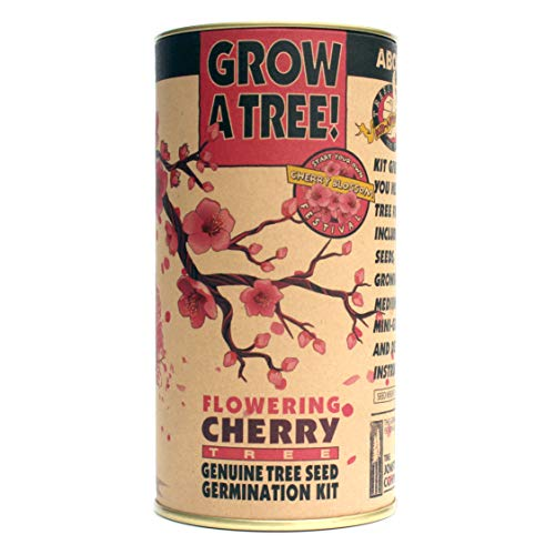 Flowering Cherry | Parks Collection | Tree Seed Grow Kit | The Jonsteen Company
