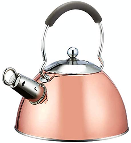 Tea fluitje inductie met anti brandende handvat, beschilderd met de waterkoker koper roestvrij staal Alle gamma theepot 2,5 liter