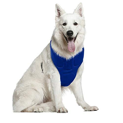 ppactvo Chaleco De Enfriamiento para Mascotas, Chaqueta De Hielo para Perros, Enfriador De Verano para Perros PequeñOs, Medianos, Grandes, Caminar, Escalar, Deportes