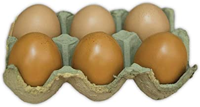 The Bridge Collection Half Dozen Decorative Life-Like Eggs in Carton (Brown)