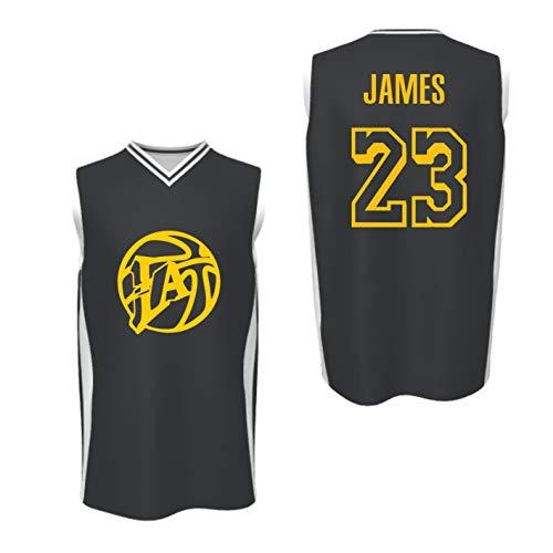 HoB Lebron James (23) NBA Basketball Jersey - Los Angeles Lakers - 2019/2010 (L)