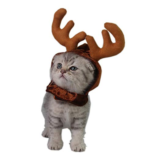 Yiwa Haarband voor honden, voor huisdieren, hoed van hout, voor huisdieren, kostuumbenodigdheden, hoeden, hertenhoed, Kerstmis