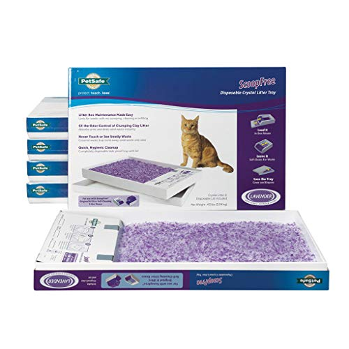 PetSafe ScoopFree Self-Cleaning Cat Litter Box Tray Refills with Lavender Non-Clumping Crystals - 6 Pack