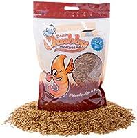 Chubby Dried Mealworms 1KG Bag Wild Bird Food