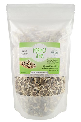 Moringa Oleifera Seeds Non-GMO PKM1 Premium Quality - Organically Grown - 10 oz. | 283 GMS (1000 Seeds Approximately) Resealable Stand Up Pouch