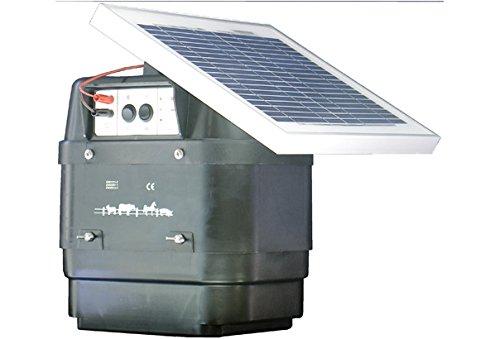 que es lo mejor pastor eléctrico solar elección del mundo