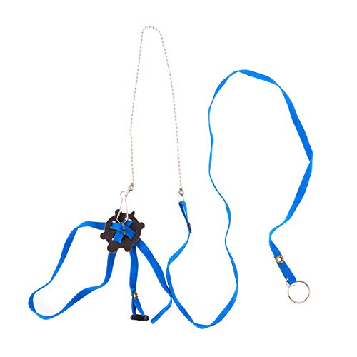 POPETPOP Arnés para Mascotas Reptil Turtle Lizard Leash Correa de Entrenamiento Ajustable para Exteriores (Azul)