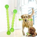 Carry stone Kauspielzeug für Hunde, unzerstörbares Hundespielzeug für Aggressive Kauer, Zahnreinigung, sicherer, langlebiger, bissfester Zahnbürstenstift für Hündchen, langlebig und praktisch