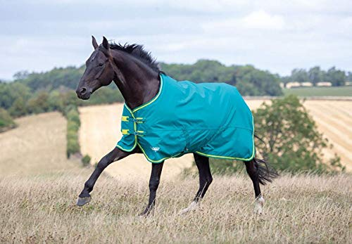 Shires Tempest Pferdedecke für den Außenbereich, 50 g, Grau/Hellgrün