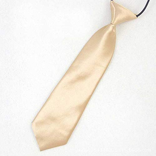 YUFSHU Solide stropdas vlinderdas voor jongens meisjes studenten stropdas Stage Performance Foto Afstudeerfeest zwart Light Champagne