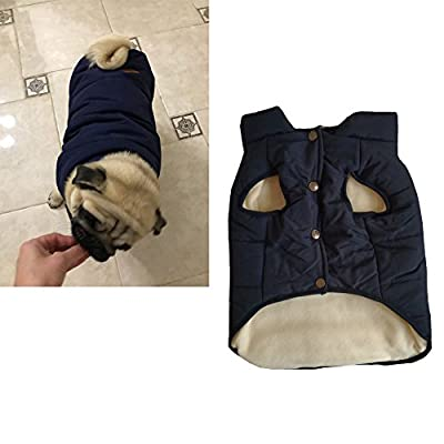 Tineer Hooded Pet Clothing Cute Pet Clothing Warm Hooded French Bulldog Warm Vest Suit (M, Blue)
