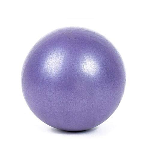 Jary 1 PC 25cm Yoga Bola Physical Fitness Aparato de Gimnasia Equilibrio Trigo Tubo de Bola for el Entrenador de Gimnasia Equilibrio Yoga Pilates 0,22 Bola li (Color : Purple)