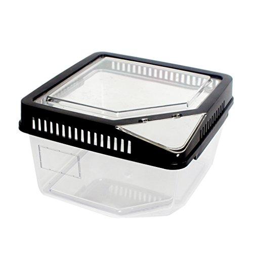PETSOLA Kunststoff Terrarium Faunarium Transportbox Faunabox für Reptilien