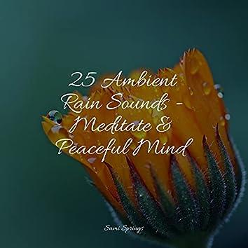 25 Ambient Rain Sounds - Meditate & Peaceful Mind