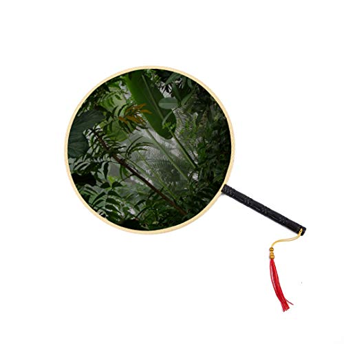 Amazon Primeval Jungle Chinese Ancient Fan Classic Palace Paddle Fan Dance Fan Best Hand Held Fan Hand Kids Fan Hand Fan Women Chinese Fan for Men