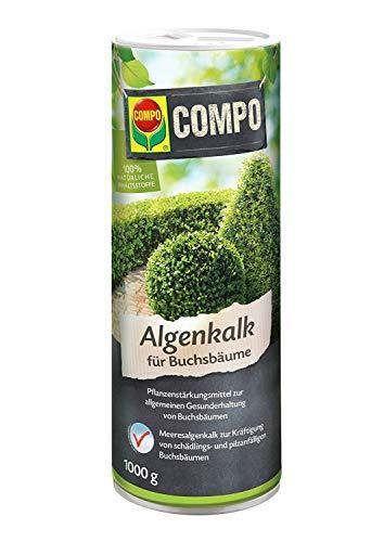 Compo Algenkalk für Buchsbäume, Pflanzenstärkungsmittel zur allgemeinen Gesunderhaltung von Buchsbäumen, 2 kg