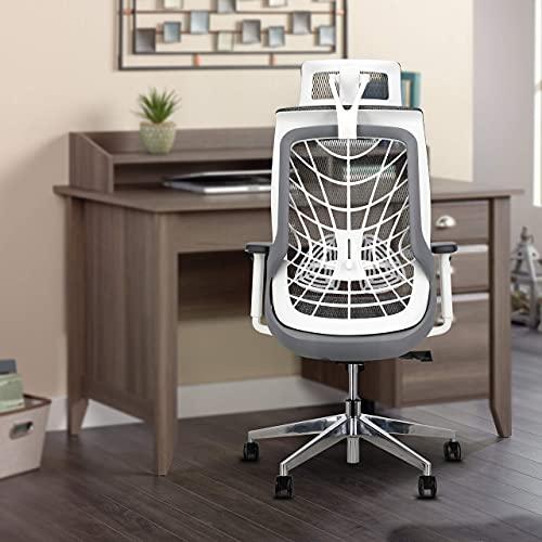JD9 High Nylon Back with Korean Mesh Ergonomic Chair for Office & Home (White & Grey)