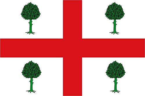magFlags Bandera Large Banderan Rectangular de Proporciones 2 3, formada por un paño Blanco con una Cruz Completa roja | Bandera Paisaje | 1.35m² | 90x150cm
